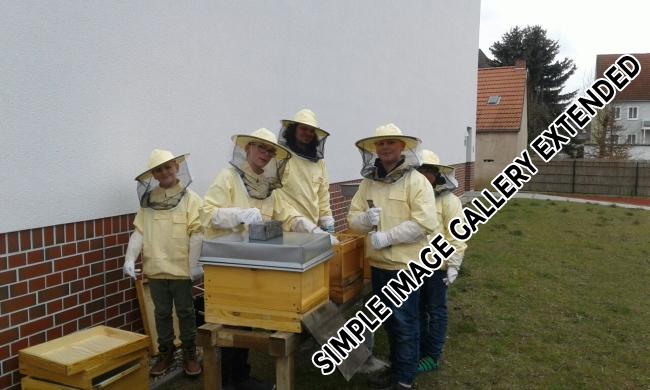 Bienen_AG_4